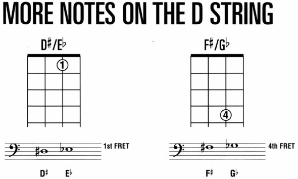 HLBM44 - More Notes on the D String.jpg